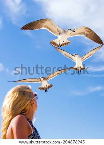 Blonde girl looking at flying seagulls against the background of blue sky - stock photo