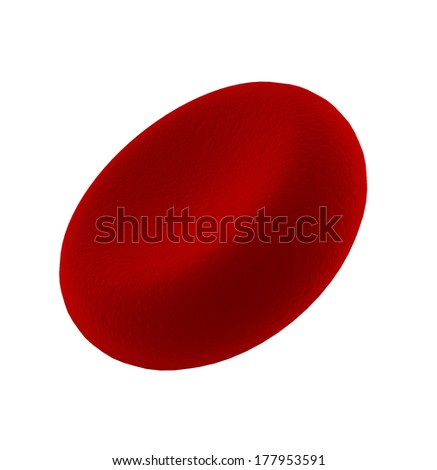Blood cell. 3d illustration on white background