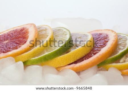 Blood Orange, Lemon, and Lime Slices on Ice - stock photo
