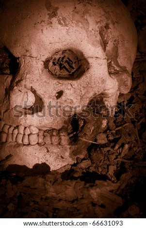 Bloodshed With A Human Skull Laying Slayed In The Battle - stock photo