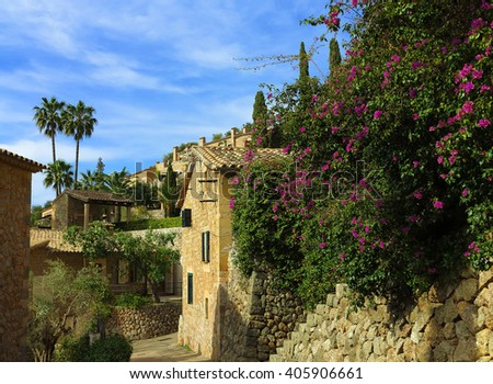 blooming bougainvillea in the mediterranean village Deia in the Tramuntana mountains, majorca, spain - stock photo