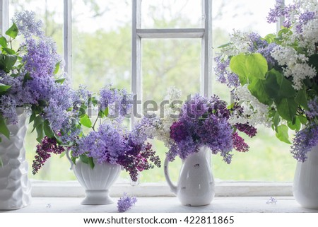 blooming branch of lilac at the window - stock photo
