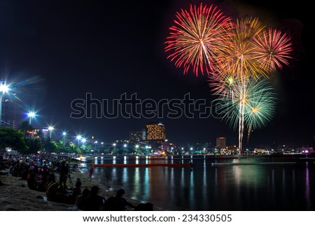 Blooming firework mixed color of celebration night  - stock photo