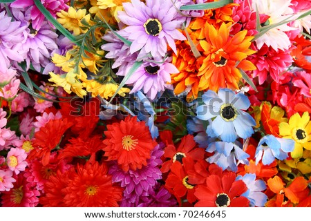 Blooming flower - stock photo