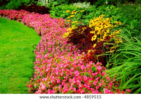 Blooming flowers in late summer garden flowerbeds - stock photo