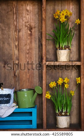 Blooming narcissus flowers on wooden background - stock photo