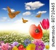 blooming spring landscape with butterfly - stock photo