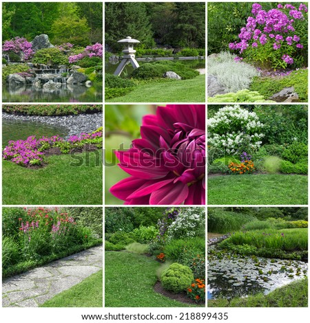 Blooming summer gardens. Collection of 9 images. - stock photo