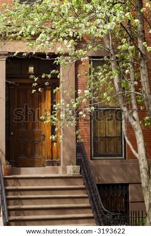 Blooming trees before Brooklyn brownstone on Brooklyn Hights neighborhood - stock photo