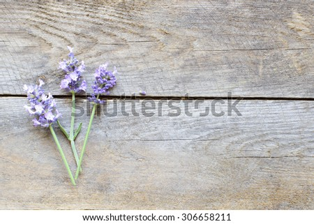 Blooming wildflowers on table - stock photo