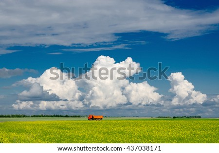 Blooming yellow rapeseed field against blue sky with clouds, Belarus - stock photo