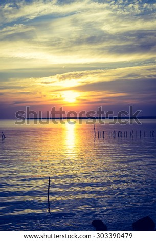 Blossom filter sunset over the sea  - stock photo