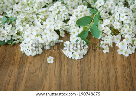 Blossom flowers on wooden background