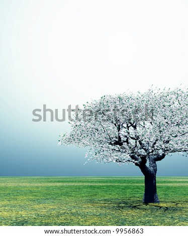 Blossoming cherry-tree in the early morning light - stock photo