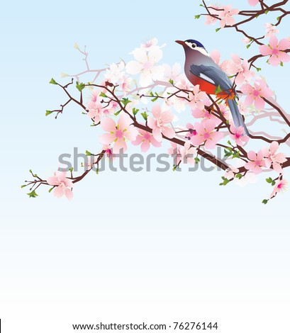 blossoming cherry tree with beautiful bird - stock photo