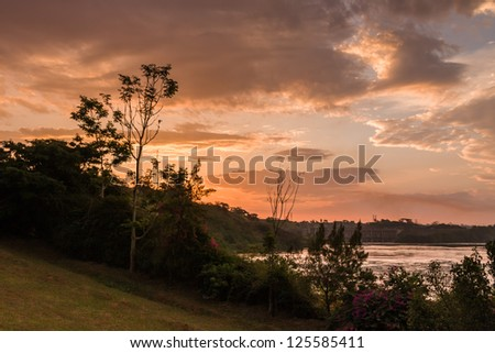 Blossoming flowers and other plants on Victoria Nile riverside at dawn against hydropower background. Jinja, Uganda, Eastern Africa.	 - stock photo