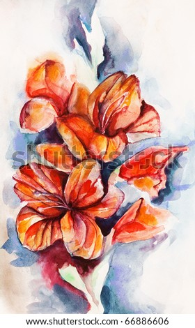 Blossoming gladiolus and poppy buds drawn by water color color on a water color paper