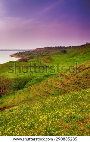 Blossoming hills near the sea. Sunset - stock photo