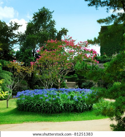 blossoming tree and flowers in park  Barcelona, Spain, Catalonia - stock photo