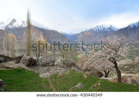 Blossoms season in Hunza valley northern Pakistan  with cloudy sky and view of karakorum range    - stock photo