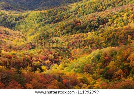 Blowing Rock overlook, Blue Ridge Parkway - stock photo