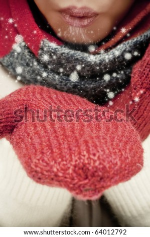 Blowing snowflakes - stock photo