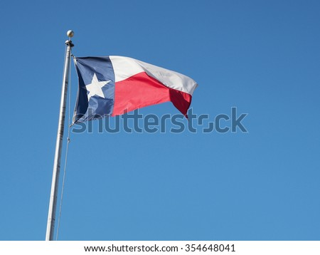 Blowing Texas flag - stock photo