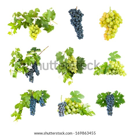 Blue and green grapes isolated on white background, set - stock photo