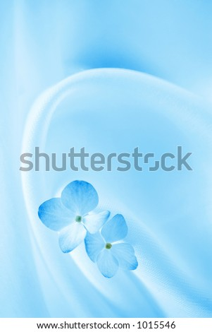 Blue Background With Flowers - stock photo