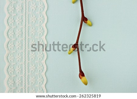 blue background with lace and spring tree branch - stock photo