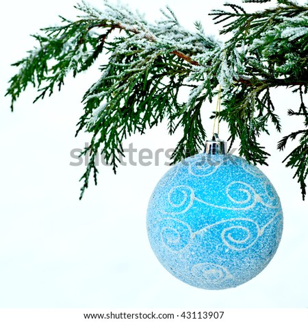 Blue ball on fir branch on white snow background - stock photo