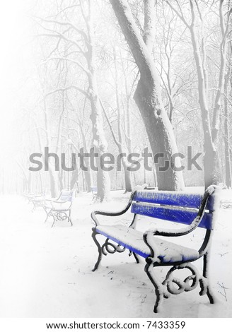 Blue benches in the fog in winter