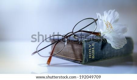 Blue Bible, White Flower - stock photo