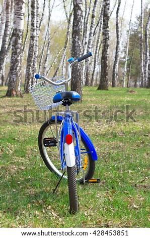 Blue bike in a birch grove - stock photo