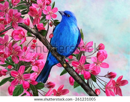 Blue bird on a branch of apple blossom - stock photo