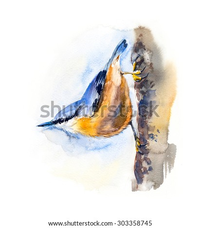 Blue bird on the tree. Watercolor hand drawing illustration. - stock photo