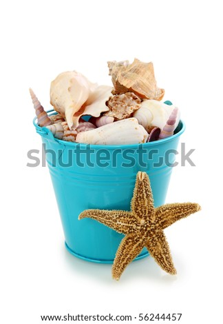 Blue bucket with seashells on white background - stock photo