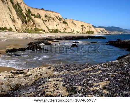 Blue california waters, mussel-covered rocks, and cliffs
