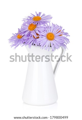 Blue camomile flowers in jug. Isolated on white background - stock photo