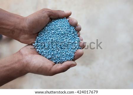 blue chemical fertilizer in farmer hand. - stock photo