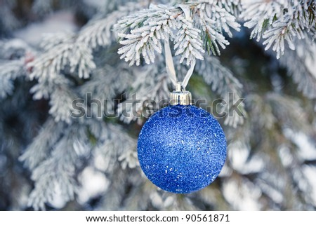 blue Christmas ball on a fur-trees covered with a snow - stock photo
