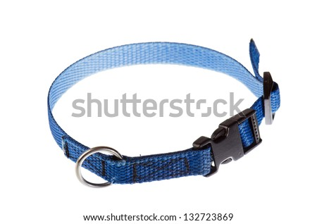 blue collar for a small dog that is isolated on white - stock photo