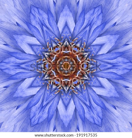 Blue, Concentric Flower Center Close-up. Mandala Kaleidoscopic design - stock photo