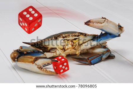 Blue Crab Throwing Red Dice. - stock photo