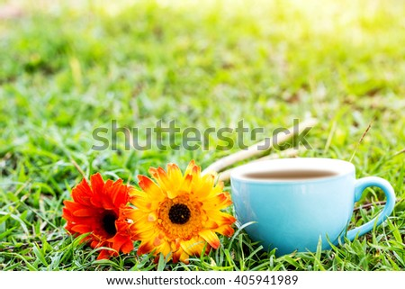 blue cup of coffee or tea and flower on yard  in garden with sun lighting. - stock photo