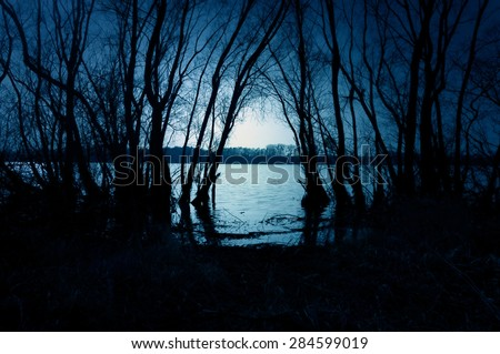 Blue dark forest with a view of magical lake - stock photo
