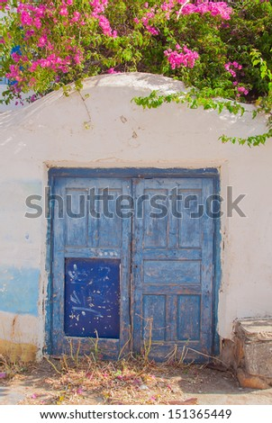 Blue door on an old whitewashed wall and a branch with flowers. Background.