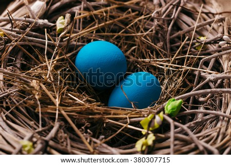 Blue Easter eggs in bird nest