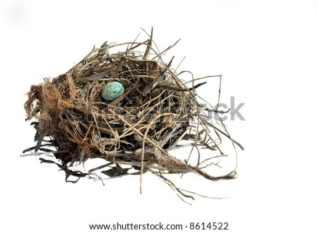 Blue Egg in a Nest - stock photo