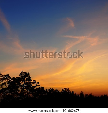 blue evening sky and the orange clouds - stock photo